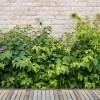 雑草対策なにがいい?施工が必要なものからお手軽なものまで7選。